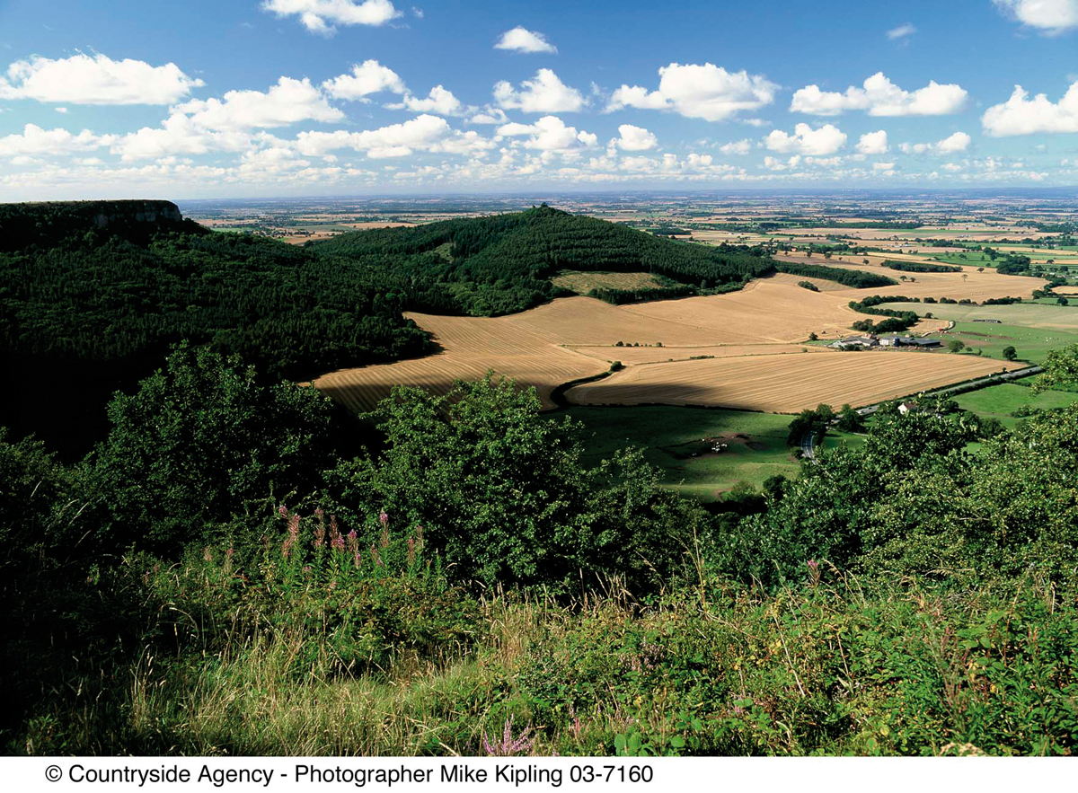 Sutton Bank © Mike Kipling, Natural England