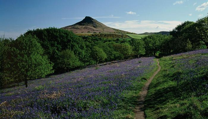 Stride in the footsteps of Captain Cook and climb your first 'mountain' at Roseberry Topping © Mike Kipling