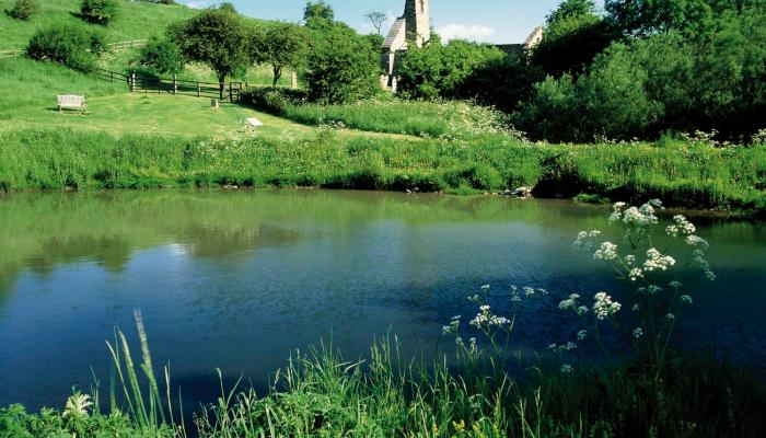 Discover the lost village of Wharram Percy © Mike Kipling