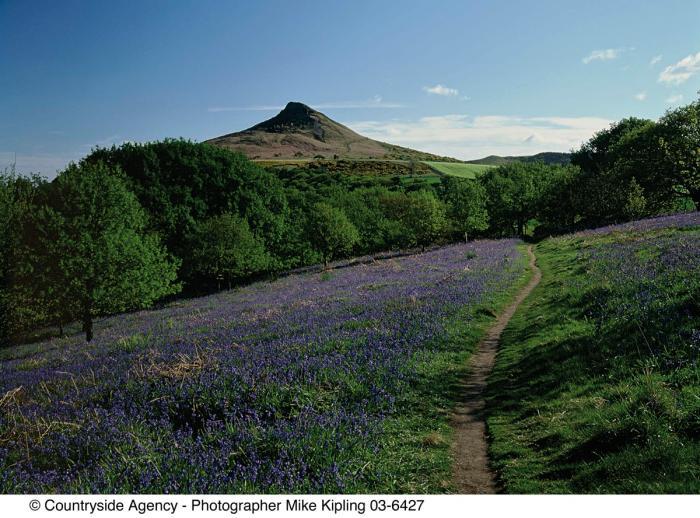 Roseberry Topping © Mike Kipling, Natural England