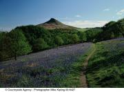 Roseberry Topping © Mike Kipling, Natural England